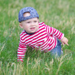 Baby creeps on grass in summer — Stock Photo #34891803