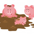 Pigs family — Stock Photo