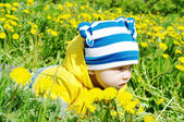 Baby in yellow jacket creeps among dandelions — Stock Photo