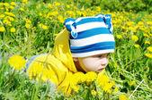 Baby in yellow jacket creeps among dandelions — Stock Photo