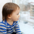 Stock Photo: Baby looking out of window