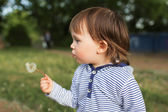 Lovely baby blowing on blowball — Stock Photo
