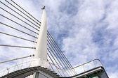 Puente suspendido — Foto de Stock