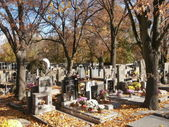 Small cemetery with autumn leafs and evening sun — Stock Photo