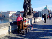 Organist on Charles Bridge, Prague, Czech Republic (2013-12-16) — Stock Photo
