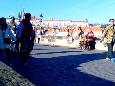 Organist on Charles Bridge, Prague, Czech Republic (2013-12-16) — Stock Video