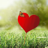 Heart with butterfly — Stock Photo