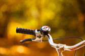 Handlebar classic bike in the nature. — Stock Photo