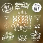 Christmas Decoration — Stock Vector #39365851