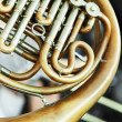 French Horn — Stock Photo #49643465