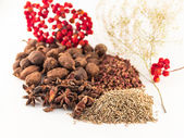 Chinese spices on the white background — Stok fotoğraf