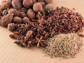 Spices — Stockfoto