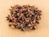 Star anise — Stockfoto