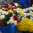 Flowers shop on thailand local market — Stock Photo