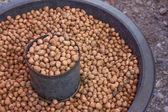 Walnut in thailand market — Stock Photo