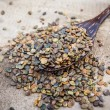 Stock Photo: Indihemp or Madras hemp seed(Crotalarijuncea) on wooden spo