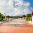 Road in Thailand  Royal flora expo — Stock Photo