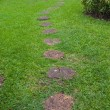 Step Stone Pathway in a Lush Green Park — Foto Stock