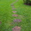 Step Stone Pathway in a Lush Green Park — Stock Photo