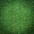 Turf Grass Texture and surface — Stock Photo