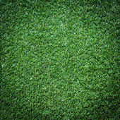 Turf Grass Texture and surface — Stock fotografie