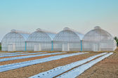 Empty greenhouse and farm field — Stock Photo