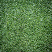 Turf Grass Texture and surface for background — Stock Photo