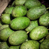 Avocado fruit in local market at thialand. — Stockfoto