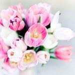 Pink wedding bouquet, tulips — Stock Photo