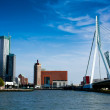 Rotterdam panorama with erasmus bridge — Stock Photo