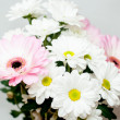 Bouquet of gerberas — Stock Photo #33827965