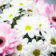 Bouquet of gerberas — Stock Photo #33827975