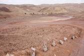 Israel desert Negev — Stock Photo