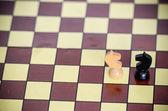 Horses on chessboard — Stock Photo