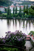 Unusual view on Vltava river, Prague — Stock Photo