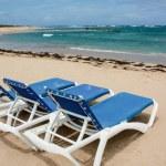 Calm beach with deckchairs under the blue sky — Stock Photo #33920493