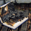 Burned book — Stock Photo
