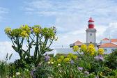 Lighthouse at Cabo da Roca — Stock Photo