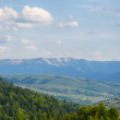 In the mountains. Carpathians, Ukraine — Stock Photo