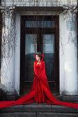 Kırmızı pelerini kraliçesi — Stok fotoğraf