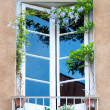 Rustic window with flowers — Stock Photo
