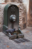 Fountain with drinking water on the street of Lisbon — Stock Photo