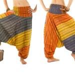 Постер, плакат: Multi Color Harem Pants with Indian Pattern