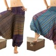 Multi-Color Harem Pants with IndiPattern — Stock Photo #39904947
