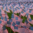 Many Small American Flags — Stockfoto #34066627