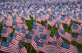 Many Small American Flags — Stock Photo