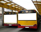 Buses — Stock Photo