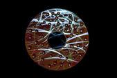 ıslak cd damla — Stok fotoğraf