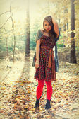 Bella mujer de pie en el bosque en otoño. hojas en el suelo y la hermosa luz del sol. — Foto de Stock