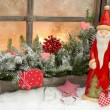 Natural christmas decoration with santa claus — Stock Photo #33584387